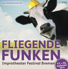 FliegendeFunkenFestival2014